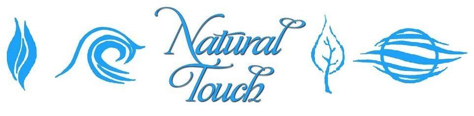 Natural Touch Therapy Institute